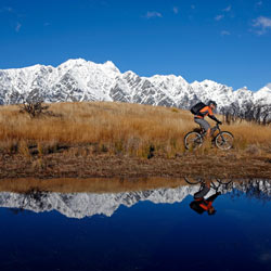 queenstownbikereflect