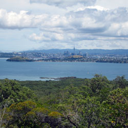 view-from-rangitoto