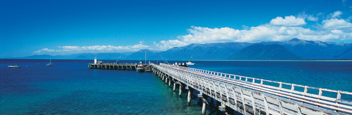 banner-NZ1